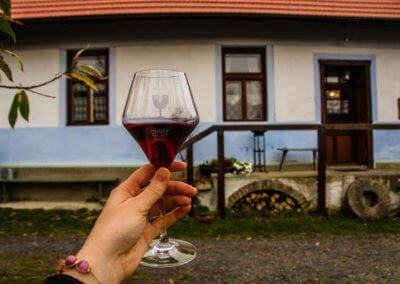 Taste of the Small Carpathians