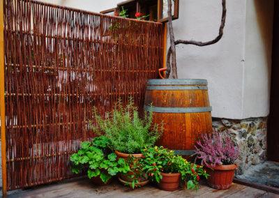 Starý vinohradnícky dvor, Modra Tours