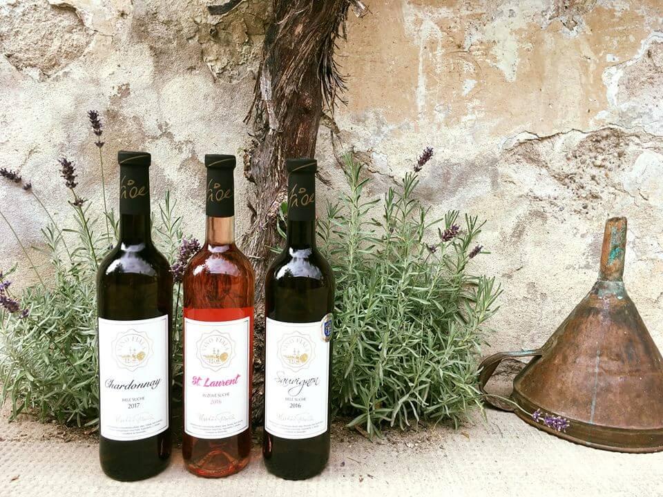 Víno Fiala, Modra Tours